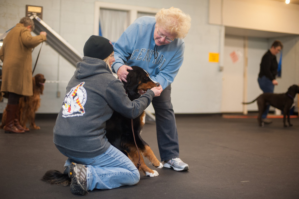 Description of . Linda Switalski works with classmate Andrea Mata (left) at the Mt. Pleasant Michigan Kennel Club's Canine Good Citizen class. (Sun photo by Holly Mahaffey/@hollymahaffey)